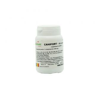 CANIFORT
